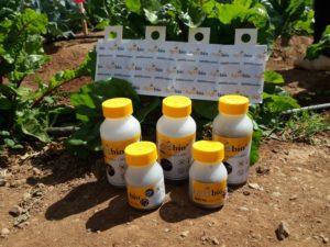 Botes y dispensadores de Insectos Beneficiosos_Agrobio