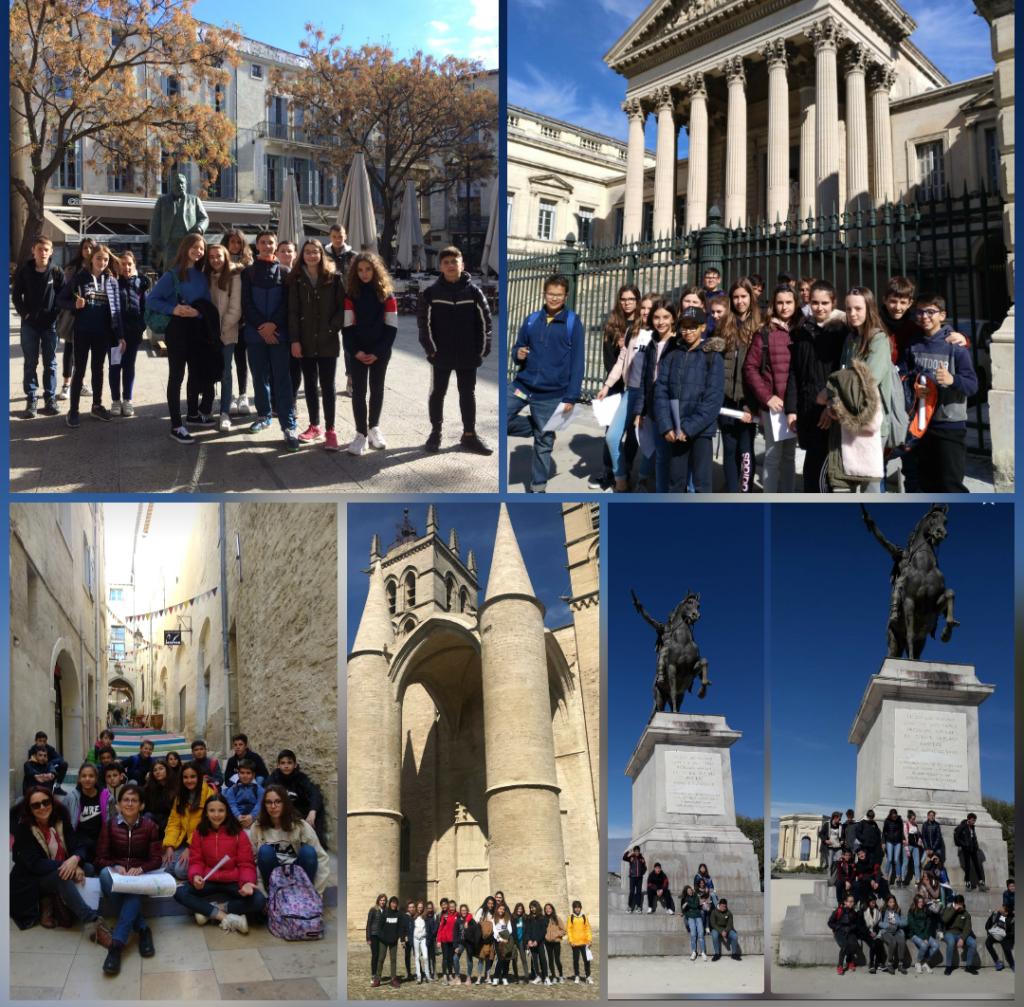 Grupos Montpellier