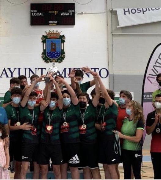 Campeones de Andalucía de voleibol